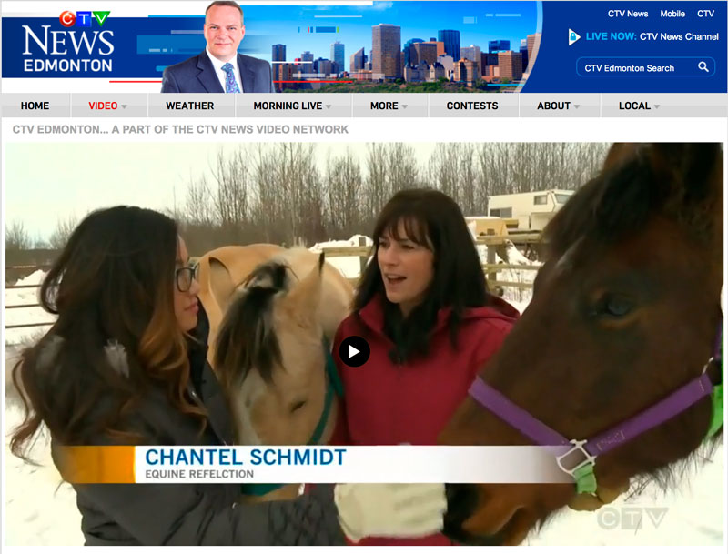 Equine Reflection on CTV-NEWS